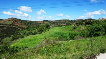 Plot with country views