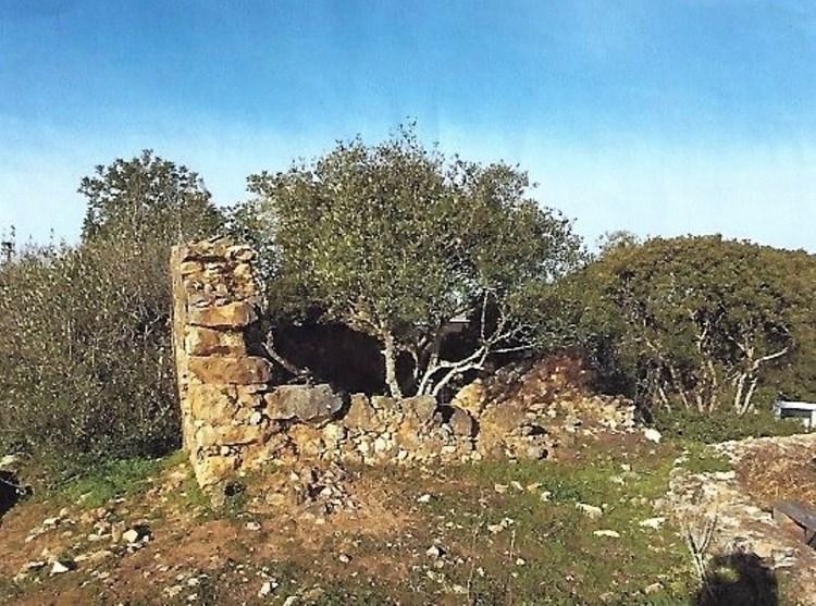 Land with Ruin for Construction in Barão de São Miguel