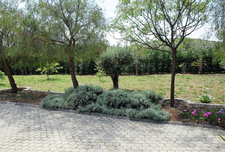 Sale Villa Sao Bras de Alportel Gardens